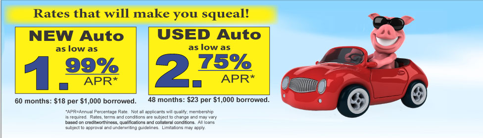 Hog Wild Auto loans